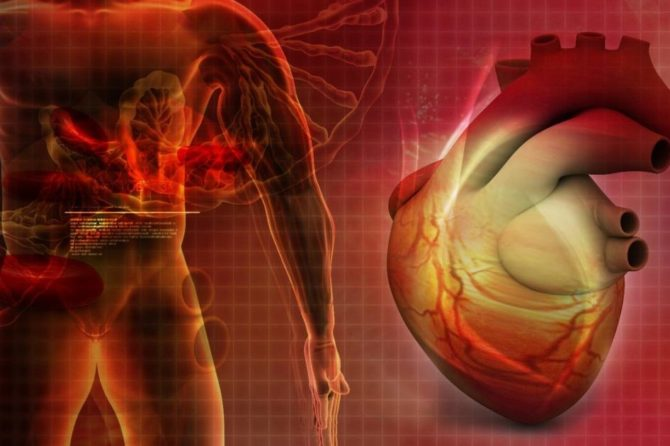 profilaktika-infarkta.jpg